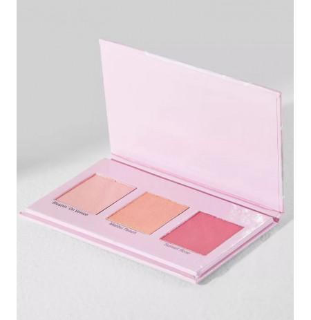 Blush Palette WnW