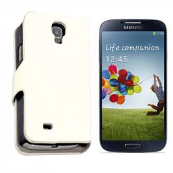 Samsung Galaxy S4, Kase Platinet Lekure e Bardhe